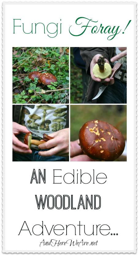 Fungi Foray! And Edible Woodland Adventure...