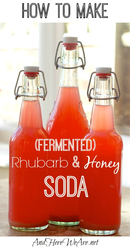 How to Make Rhubarb & Honey Soda (With Lacto-Fermentation!) - And Here ...