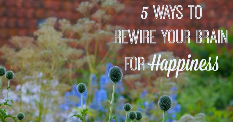 5 Ways to Rewire Your Brain for Happiness  And Here We Are