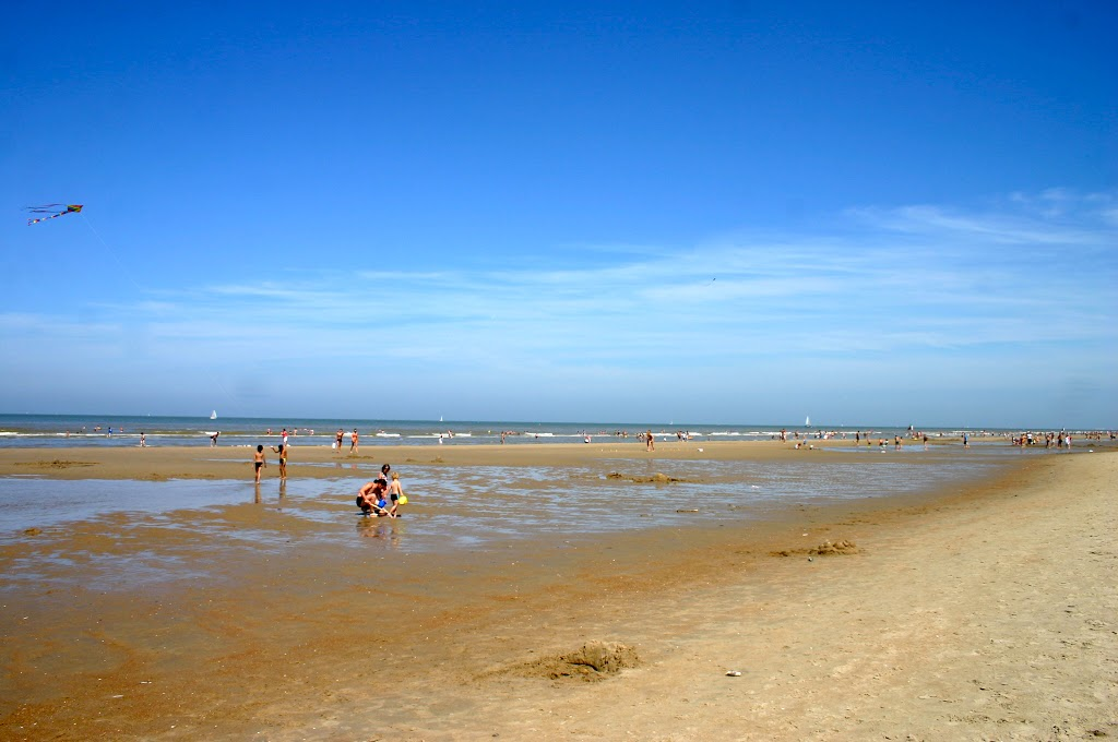 The Beaches in Belgium– Was it All Just a Dream?