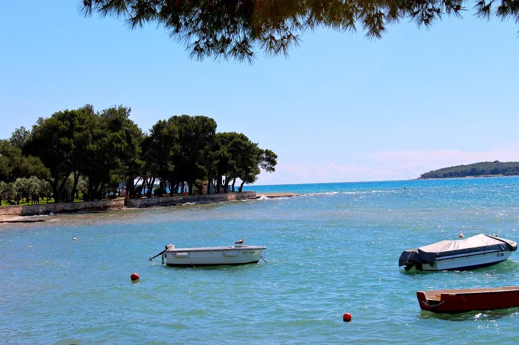 Brijuni Island: A Historic Croatian Oasis