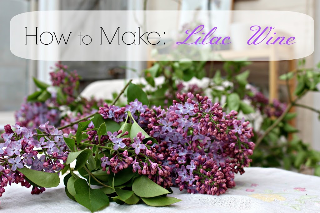 Making Lilac Wine