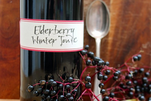 Making Elderberry Winter Tonic Syrup with Fresh Elderberries