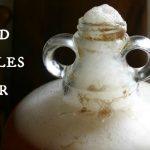How to Make Nettles Beer