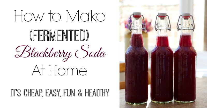 How to Make Fermented Blackberry Soda