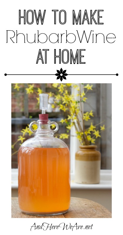 How to Make Rhubarb Wine at Home