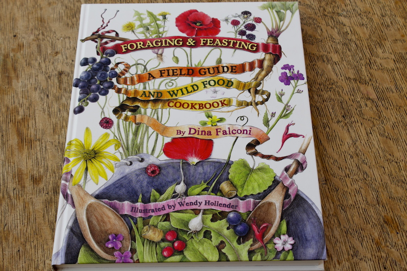 Book Review: Foraging & Feasting by Dina Falconi