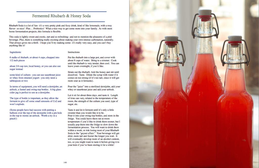 Fermented rhubarb soda recipe