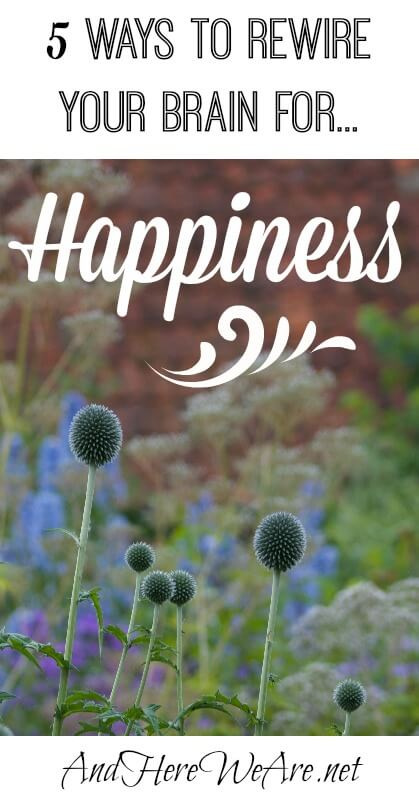 5 Ways to Rewire Your Brain for Happiness  AndHereWeAre.net